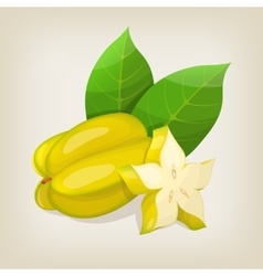 Star fruit carambola vector