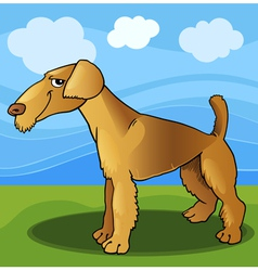 Airedale terrier dog cartoon vector