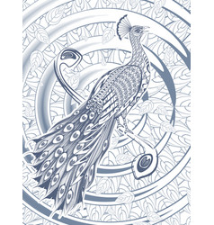 hand drawn beautiful peacock template vector image