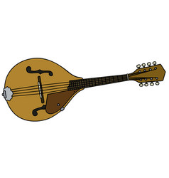 classic country mandolin vector image