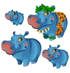 Hippos rest and sunbathe on holiday vector