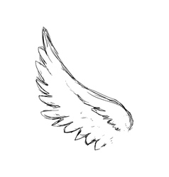Sketch wing icon animal design graphic vector