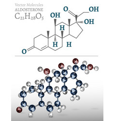 aldosterone molecule image vector image