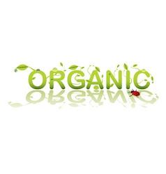 organic shop vector image