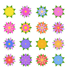 a set of beautiful colorful flowers isolated vector image vector image