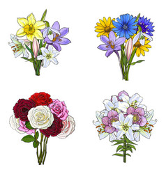 bouquets bunches of hand drawn wild and garden vector image vector image