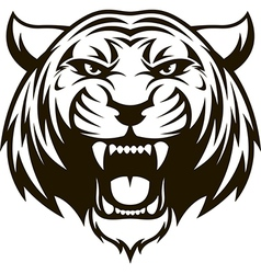 Ferocious tiger head vector image