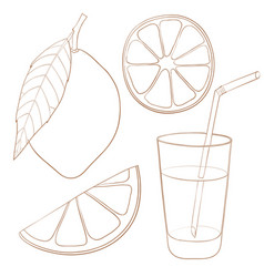 Lemon and glass of lemonade hand drawn outline vector