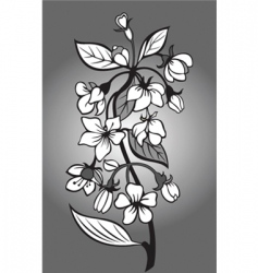 Blossom branch vector