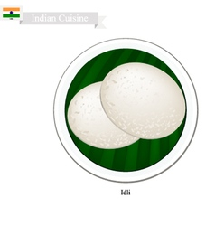 Idli or traditional indian steamed rice cake vector