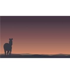 Landscape zebra silhouettes in hills vector image