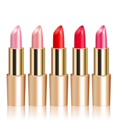lipsticks vector image vector image
