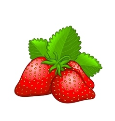 Strawberry icon in whole and half vector image vector image
