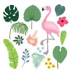 summer tropical graphic elements with flamingo vector image vector image