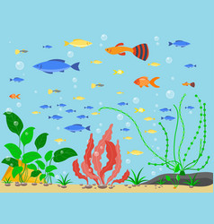 Transparent aquarium sea aquatic background vector