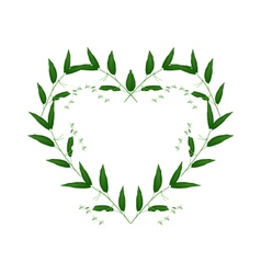 White solomons seal flowers in a heart shape vector
