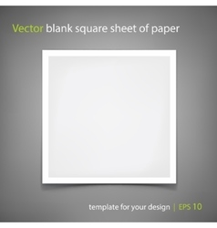 blank square sheet of paper Template for vector image vector image