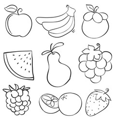 Doodle of fruit style hand draw vector