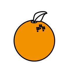 Orange fruit healthy harvest image vector