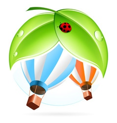 Green icon with leaves and Hot Air Balloon vector image
