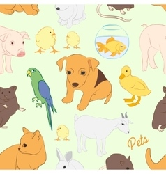 Animals pets colorful pattern vector image