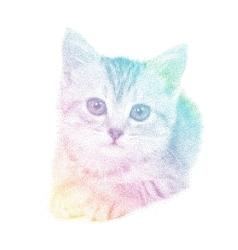 cat in spectrum stipple vector image vector image