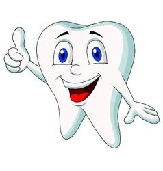 Cute tooth cartoon thumb up vector image