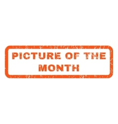 Picture Of The Month Rubber Stamp vector image vector image