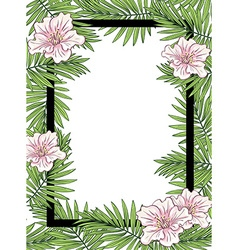 Palm leaves and flowers frame vector