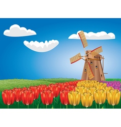 Windmill and Tulips2 vector image