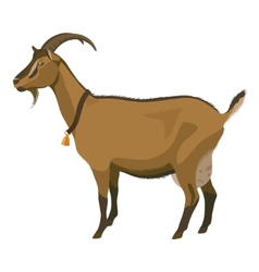 Brown goat side view isolated vector