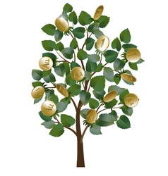 Money tree with leaves and gold coins vector image