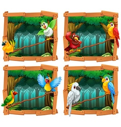 Wild birds in the forest vector