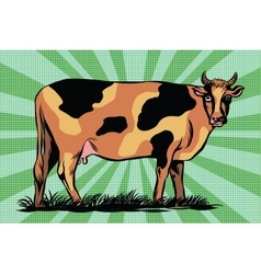 Color spotted farm cow vector
