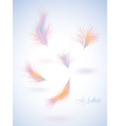 Set of warm colors fluffy feathers vector