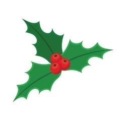 Holly berry christmas vector
