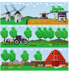 Set of farm wheat field countryside vector