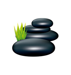 Color spa volcanic rocks with grass icon vector