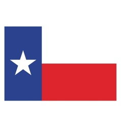 Texas flag vector