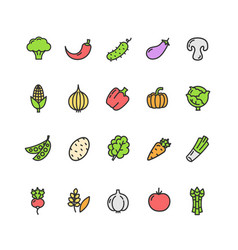 Vegetables food color thin line icon set vector