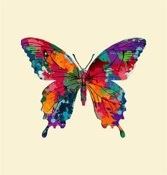 Butterfly with colorful paint texture vector