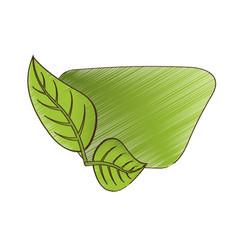 Drawing green leaves natural card vector