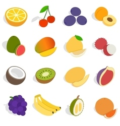 Fruit icons set isometric 3d style vector image