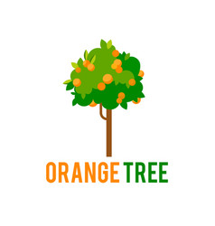 Orange tree with fruits tree in a flat vector