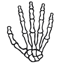 human skeleton hand vector image vector image