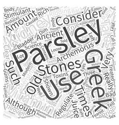 Parsley Word Cloud Concept vector image vector image