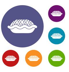 Pie icons set vector