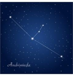 andromeda vector image