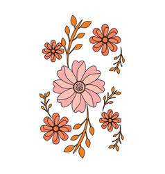 cute flowers decoration natural image vector image