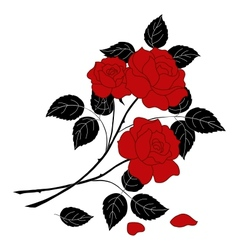 Flowers rose silhouette vector image